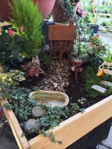 FairyGarden13