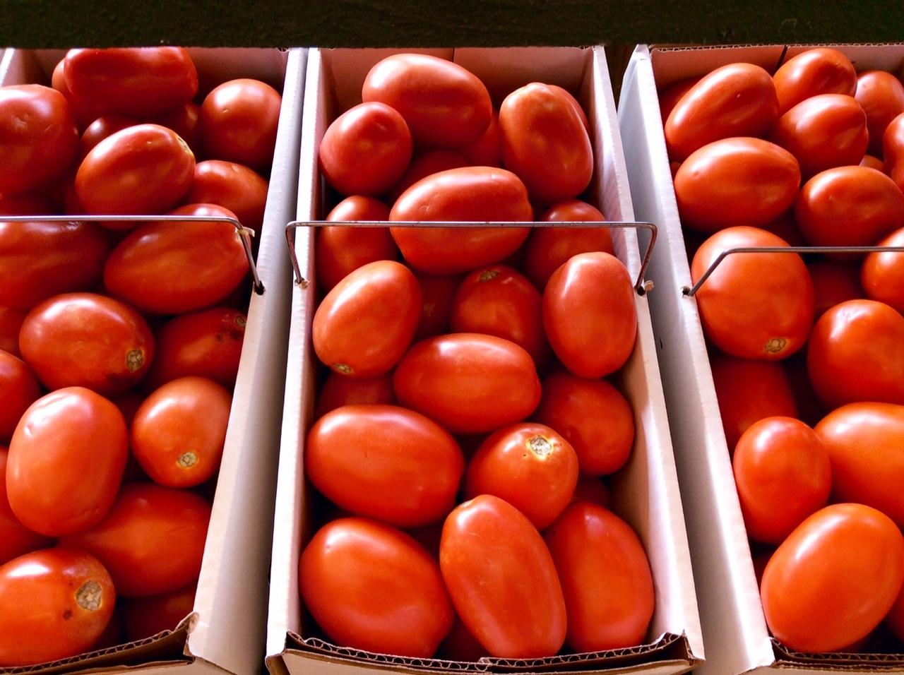 Akron, Ohio Farm Market : Graf's Farm Market