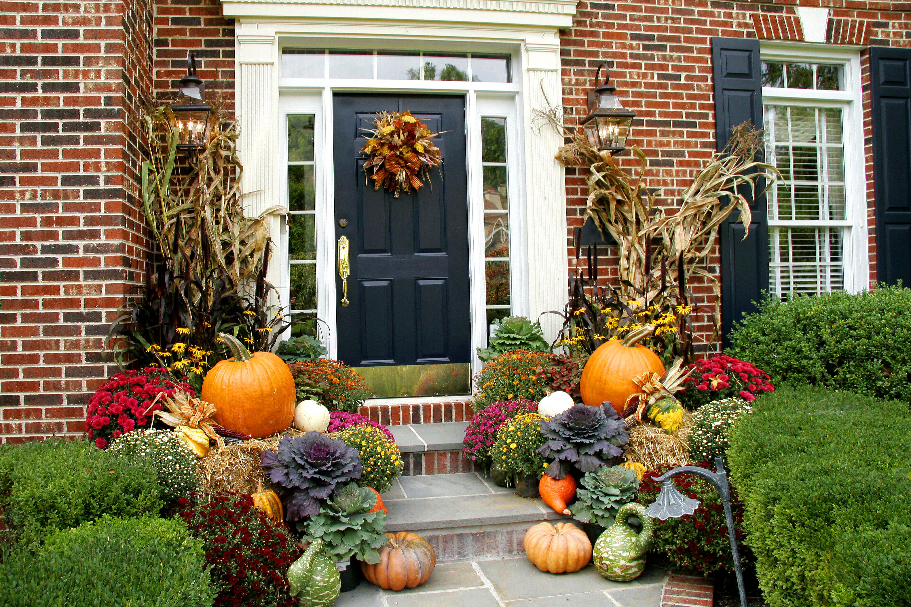 Fall decorating ideas graf growers for Front door decor