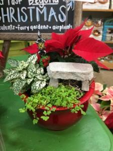 Terrarium and Miniature Garden Workshop @ Graf's Garden Shop | Akron | Ohio | United States
