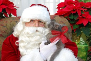 Free Photos with Santa @ Graf's Garden Shop | Akron | Ohio | United States
