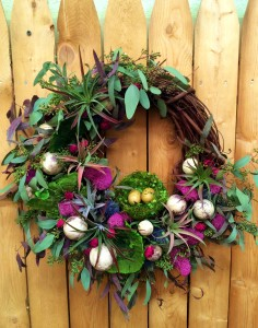 Air plant wreath workshop