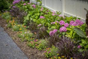 Creating Interest Class @ Graf's Garden Shop | Akron | Ohio | United States