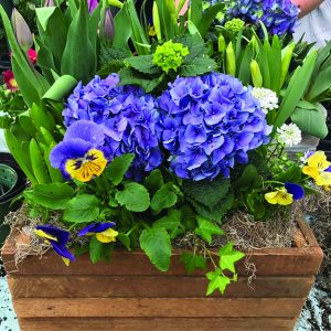 Spring Flower Box Workshop