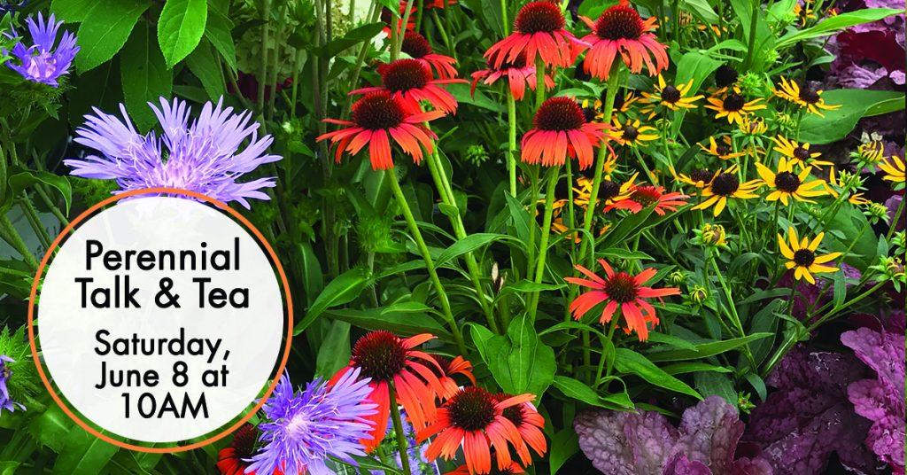 Perennial Talk and Tea