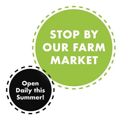graf's farm market is open