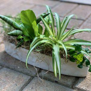 Fresh Air Garden Workshop