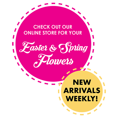 shop online for easter and spring flowers