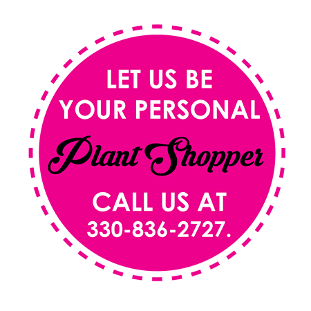 Get a plant personal shopper at Graf's