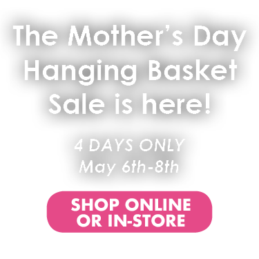 Mothers Day Hanging Basket Sale May 6th-8th