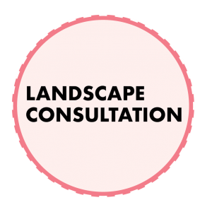 get a landscape consultation in akron